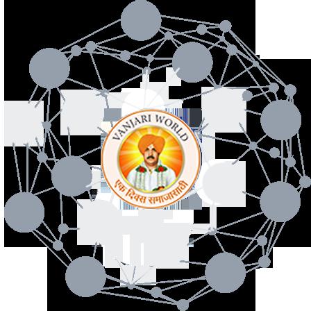 net-member